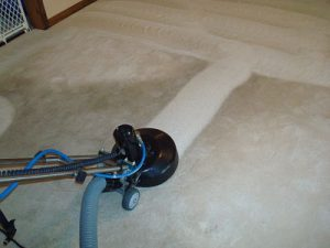 Carpet Cleaning by ALL CLEAN!, LLC (2)