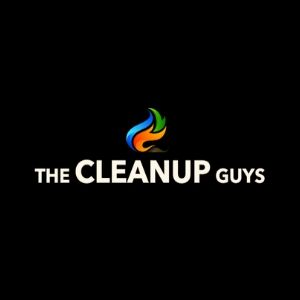 The CleanUP Guys